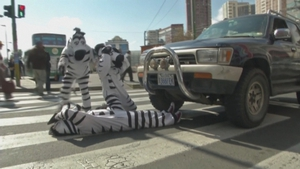 The 'zebras' try to encourage drivers to respect pedestrians