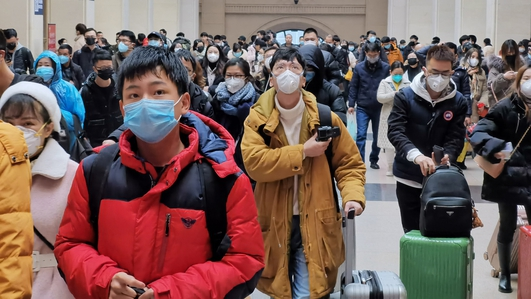 China's Wuhan shuts down transport due to virus