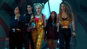 Birds of Prey is out in Irish cinemas on February 7