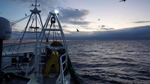 The Irish South and West Fish Producers Organisation said it would be irresponsible to keep landing fish without a plan