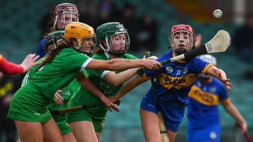 Tipperary pipped Limerick in the Gaelic Grounds