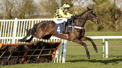 Shishkin has done all his winning under Rules on flat tracks, but will face a rather different challenge at Cheltenham