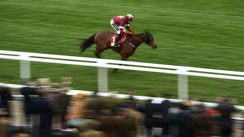 Gigginstown statement: 'We have a duty of care to Tiger, and so we will not ask him to carry an unfair weight burden especially as he gets older and his form declines'