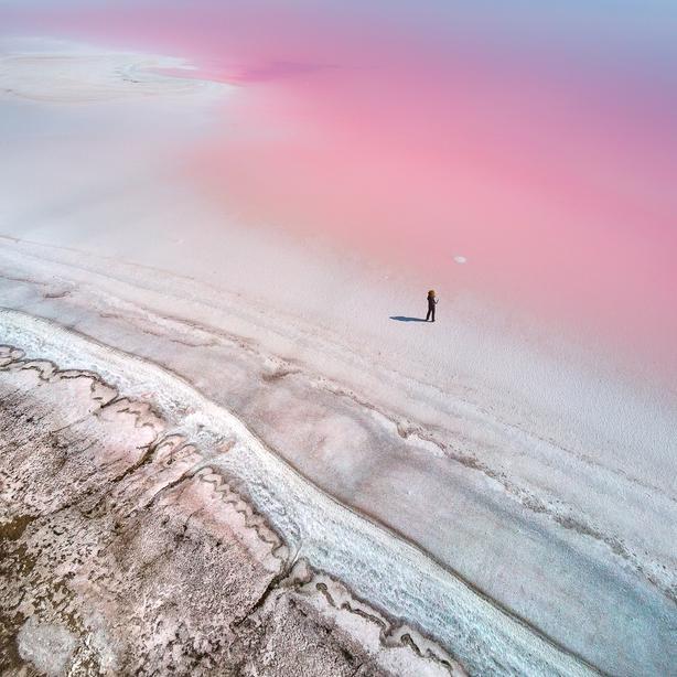 (Yevhen Samuchenko, Ukraine, Shortlist, Professional, Natural World & Wildlife, 2020 Sony World Photography Awards/PA)