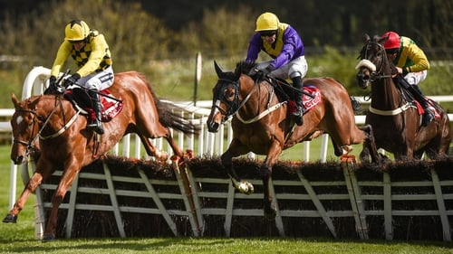 Cilaos Emery (hood) will tackle the smaller obstacles at Cheltenham