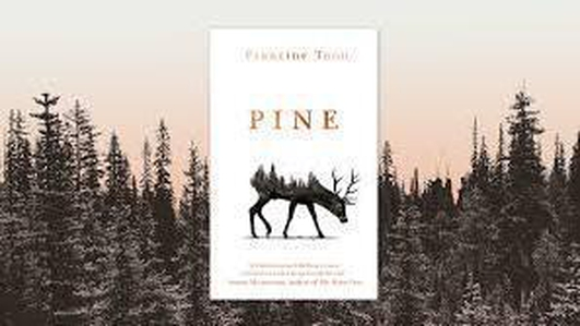 Pine - Book review