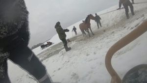 The horses were all saved successfully, with none of them sustaining injuries
