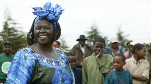 Kenyan ecofeminist, human rights campaigner and Green Belt Movement founder Wangari Maathai who was awarded the 2004 Nobel Peace Prize. Photo: Micheline Pelletier/Corbis via Getty Images
