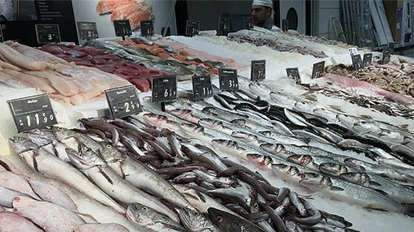 """""""Fish is usually caught locally and the distance from the catching point to the retailer is usually not long"""""""