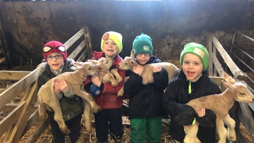 The boys - Charlie, Luke, James and Tom - have named the lambsBubbles, Chloe, Frosty and Betty