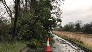 A fallen tree blocks the road at Digsby Bridge near Sallins, Co Kildare (Pic: Rolling News)