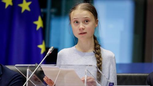 Greta Thunberg addressed MEPs today