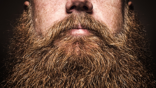 """""""Beards were a source of pride and led to nicknames such as Jutting-Beard, Silk-Beard and Old-Beardless"""""""
