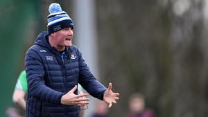 Mick Bohan's Dublin had four points to spare over Waterford