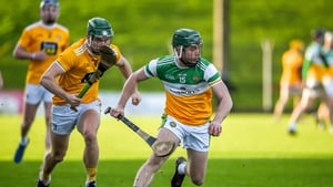Offaly are set for another season in the second tier
