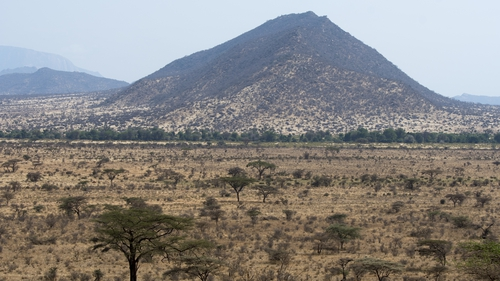 Around one million tourists visit Kenya every year to see the country's famous national parks