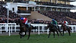 Ferny Hollow was an impressive winner of last season's bumper at Prestbury Park