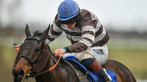 Ricky Doyle and Well Set Up triumphed at Limerick