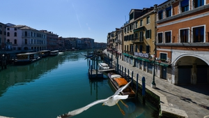 Fish have returned to Venice's cleaner and clearer waters