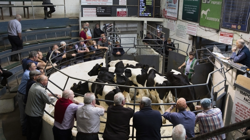 Farmers at Kilcullen Mart in Co Kildare in 2019 (Pic: RollingNews.ie)