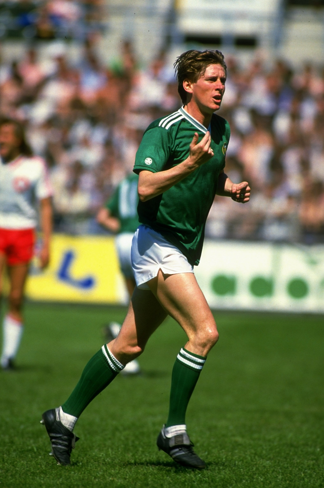 Image - Gerry Daly in action during Italia 90 qualifying