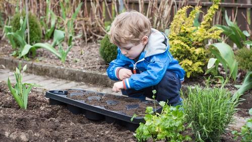 Bloom show garden designer Jane McCorkell offers some sage advice.