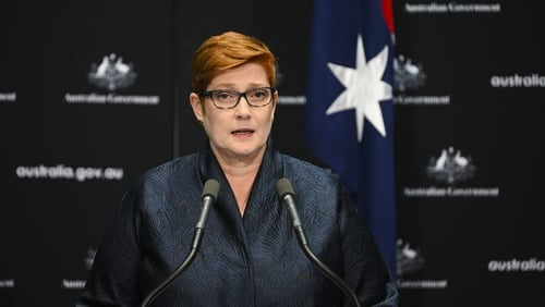 Australian Foreign Minister Marise Payne believes there is no place for the WHO on any review panel investigating the response to the pandemic