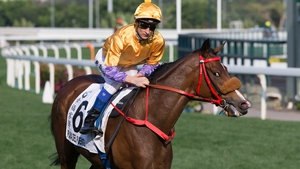 Playa Del Puente and Blake Shinn finished second in the Hong Kong Derby as 290-1 outsiders