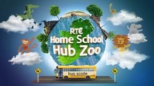 Hub Zoo