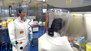 Researchers work in a lab at the Wuhan Institute of Virology