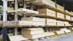Forest Industries Ireland have called on the Government to take urgent action to deal with the backlog