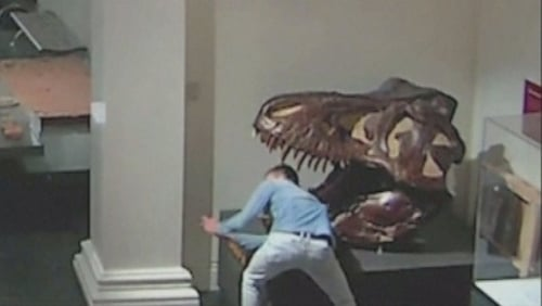 The man is accused of breaking into the museum with CCTV footage showing someone taking selfies with dinosaurs