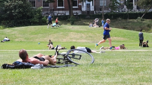 Making the most of the sunshine in Merrion Square, Dublin today (Pic: Rollingnews.ie)