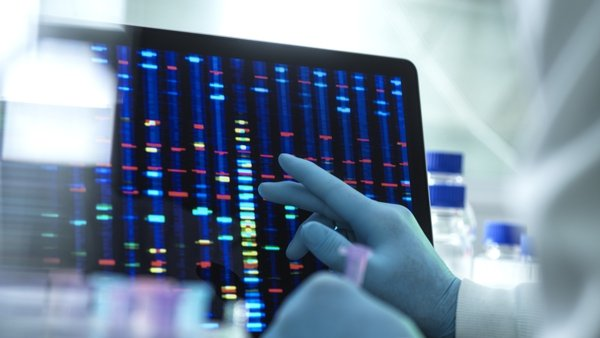 In 2019 theFSI reference index of the DNA database grew by close to 10,000 profiles