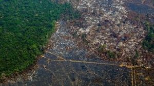 An aerial view of deforestation in Nascentes da Serra do Cachimbo Biological Reserve in Altamira, Para state, Brazil, in the Amazon basin