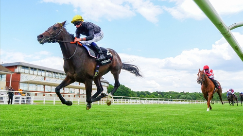English King is likely to go off favourite for the Derby at Epsom at 4.55pm