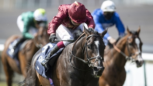 Kameko returns to the Rowley Mile on Friday for the first time since his Classic win in the 2000 Guineas