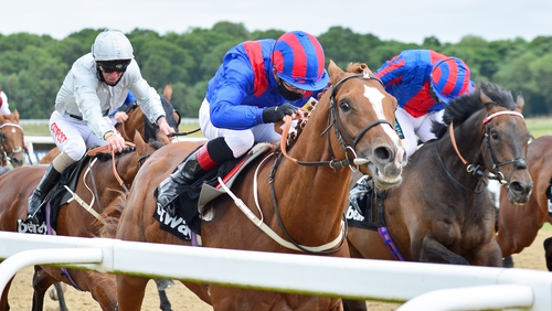 Nayef Road led home better-fancied stablemate Mildenberger in the feature at Gosforth Park