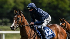 Jockey Seamie Heffernan, wearing a protective mask, on eventual winner More Beautiful