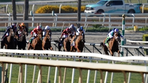 Sharing beat the likes of Daahyeh and Albigna in last season's Breeders' Cup Juvenile Fillies Turf