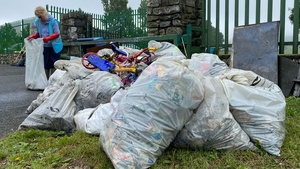 Almost 100 bags of rubbish were collected during two clean-ups of the River Dodder in Dublin at the weekend