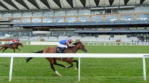 Santiago is one of Aidan O'Brien's hopefuls for the Dubai Duty Free Irish Derby