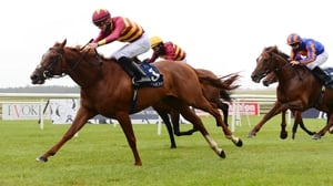Crossfirehurricane extended his unbeaten record to four races in the Gallinule Stakes on his most recent outing