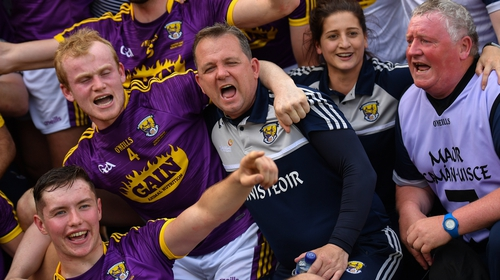 Davy Fitzgerald celebrates with his team following their Leinster SHC success
