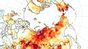Temperature anomalies from March 19th to June 20th 2020. Red colours show areas that were hotter than average for the same period from 2003 to 2018. Image: EPA-EFE/NASA