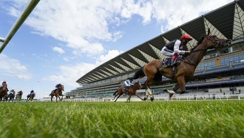 Frankly Darling is the main rival in the betting to Oaks favourite Love