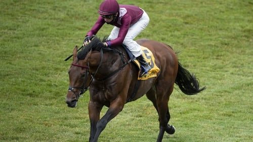 Mishriff will bid for a fourth Group One win on Saturday