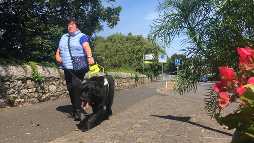 Forrest and his owner Tina Lowe face new challenges as Covid-19 restrictions are lifted
