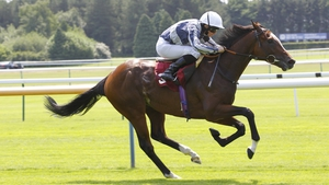 Highest Ground and Ryan Moore win the Novice Stakes at Haydock in June