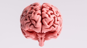 """""""We are only starting to understand the full scope of the brain's involvement in the disease"""""""